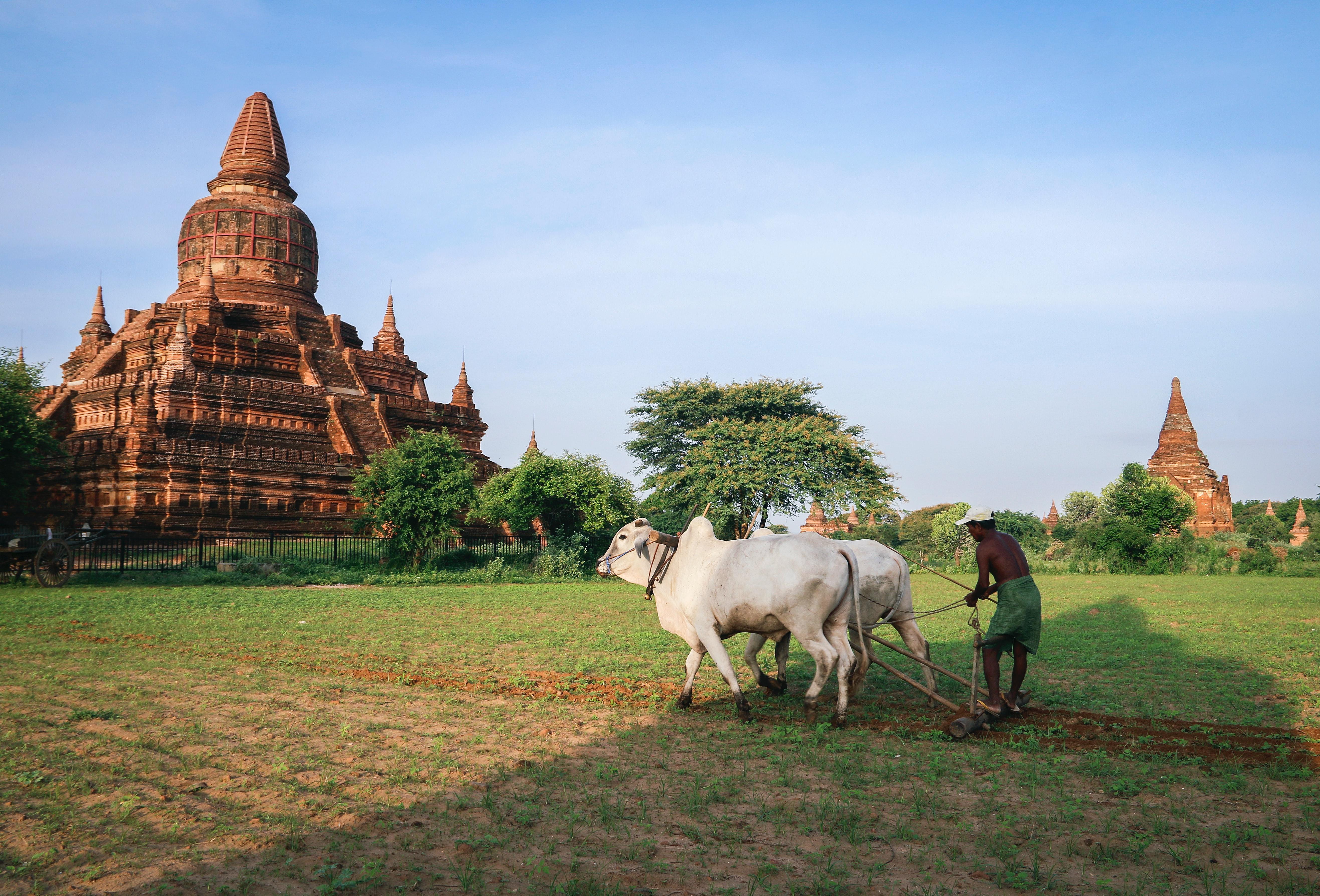 HERITAGE CULTUREL ET RENCONTRES COMMUNAUTAIRES AU MYANMAR
